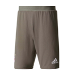2017-2018 Bayern Munich Adidas Training Shorts (Cinder)