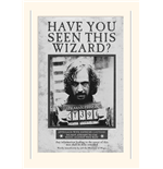 Harry Potter Print 274694