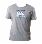 2017-2018 Cardiff Blues Rugby Graphic Tee (Grey)