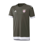 2017-2018 Bayern Munich Adidas UCL Training Shirt (Cinder)