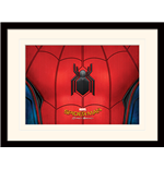 Spiderman Print 276285