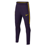 2017-2018 Tottenham Nike Training Pants (Purple) - Kids
