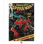 Spiderman Poster 283044