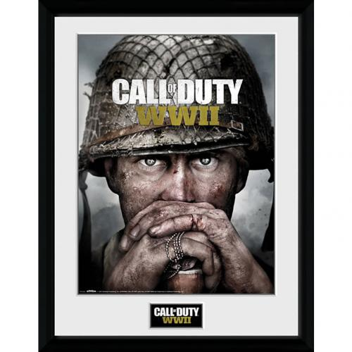 Call Of Duty WWII Picture 16 x 12