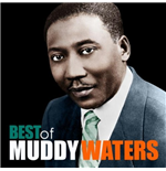 Vynil Muddy Waters - The Best Of