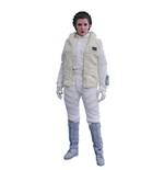 Star Wars Episode V Movie Masterpiece Action Figure 1/6 Princess Leia 26 cm