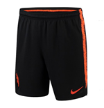 2018-2019 Holland Nike Dry Squad Training Shorts (Black)