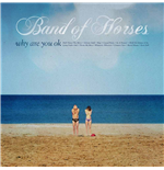 Vynil Band Of Horses - Why Are You Ok?