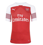 2018-2019 Arsenal Puma Home Authentic EvoKNIT Football Shirt