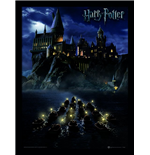 Harry Potter Print 301887