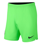 2018-2019 Barcelona Away Nike Goalkeeper Shorts (Green)