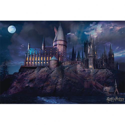 Harry Potter Poster Hogwarts 299