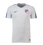 2018-2019 Atletico Madrid Nike Training Shirt (Wolf Grey)