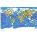 World map Poster 311518