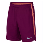 2018-2019 Barcelona Nike Squad Training Shorts (Deep Maroon)