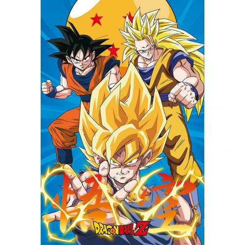 Dragon Ball Z Poster Gokus 177