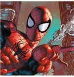 Spiderman Print 347685