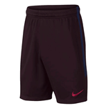 2019-2020 Barcelona Nike Squad Training Shorts (Burgundy) - Kids