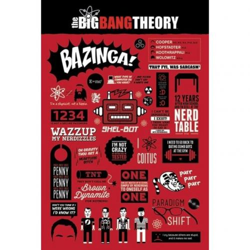 The Big Bang Theory Poster Infographic 136