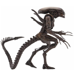 Aliens Series 14 Xenomorph Warrior Af Action Figure