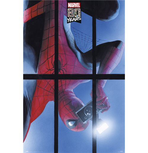 Spiderman Poster 397343