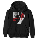 Green Day Unisex Hoodie: American Idiot